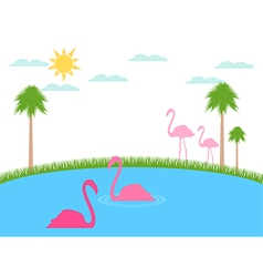 Landscape with flamingos wildlife refu vector image