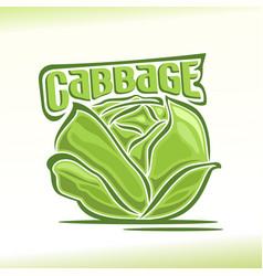logo for cabbage vector image