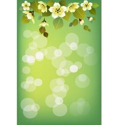 Summer holidays background Sakura vector image vector image