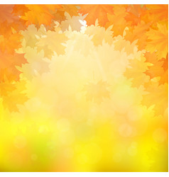 autumn leaves on blurry background vector image