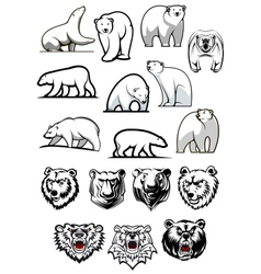 White polar bear cartoon characters vector