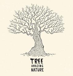 amazing tree vector image