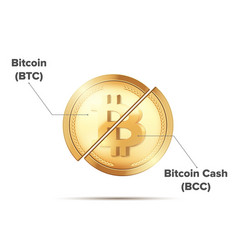 cryptocurrency bitcoin separation vector image vector image