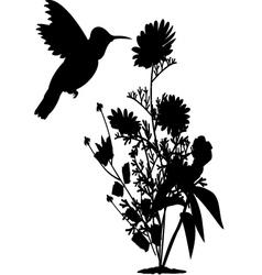 Hummingbird and tree vector