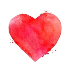 Watercolor Valentine heart vector image