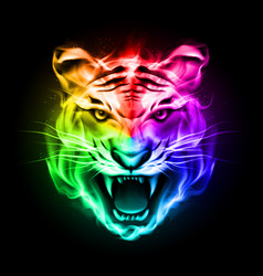 Head of tiger blazing in spectrum fire on black vector