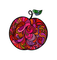 apple hand drawing in doodle style vector image vector image