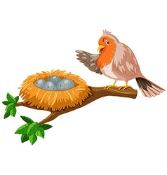 Bird and the eggs in the nest vector image vector image
