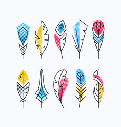 colorful abstract feathers set vector image