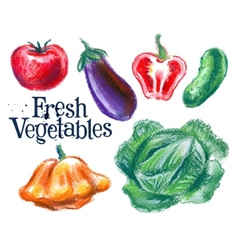 fresh vegetables logo design template vector image vector image