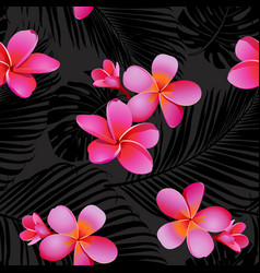 Tropical coral flowers and leaves vector
