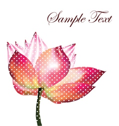 Beautiful lotus vector image