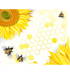 Sunflowers and bees on a crisp white background vector