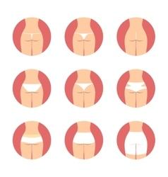 Various types of women panties back view vector