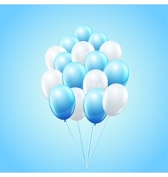 Balloon bunch vector