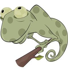 Big Chameleon vector image vector image