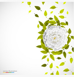 White flower and leafs on bright background vector