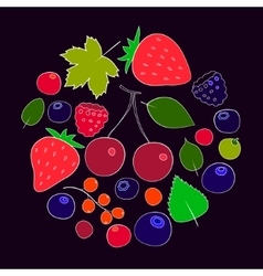 Colorful berries and leaves collection vector