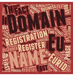 Eurid text background wordcloud concept vector image vector image
