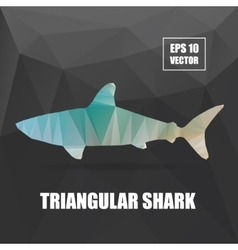 Poly design shark triangular  shark vector