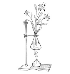Laboratory jar with flower and burner vector