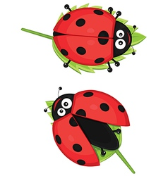 Cute ladybug vector