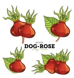 Dog-rose set vector