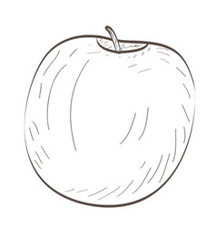 Isolated apple outline vector