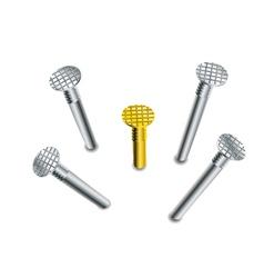 set of nails vector image