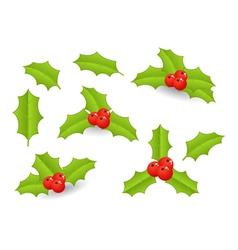 Christmas berries vector