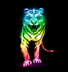 Fire tiger in spectrum colors isolated on black vector