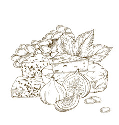 Pile of hand drawn cheese with grape and fig vector