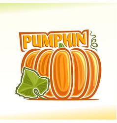 Pumpkin still life vector