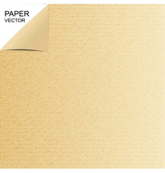 Background paper vector image