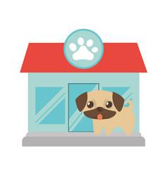 puppy little tongue out pet shop paw print vector image
