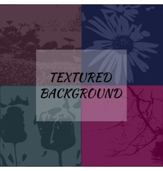 Set of 4 textured backgrounds vector image vector image