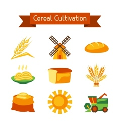 Cereal cultivation and farming icon set vector
