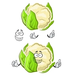 Healthy cauliflower vegetable cartoon character vector