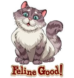 Feline vector