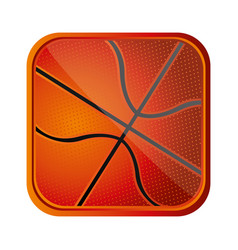 Ball basketball background icon vector