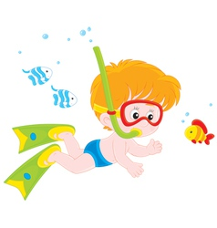 Little diver vector image