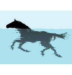 Swimming horse vector