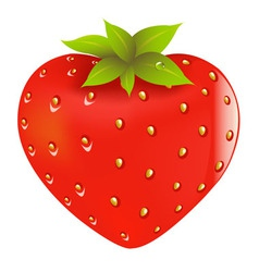Fresh strawberry vector