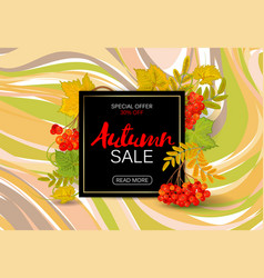 autumn sale background with colorful autumn leaves vector image