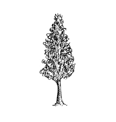 Black and white sketch of a tree vector image vector image