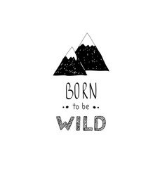 hand drawn wild forest vector image vector image