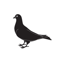 Beautiful silhouette of a dove vector image