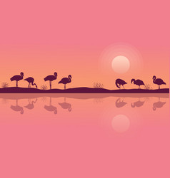 Flamingo on riverbank scene silhouette collection vector