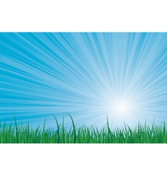 sunburst green grass vector image