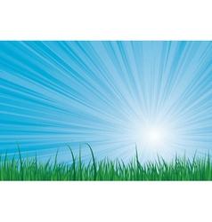 Sunburst green grass vector